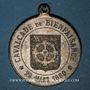 Monnaies Alsace. Mulhouse. Cavalcade de bienfaisance. Hiver rigoureux. 1879-80. Médaille zinc. 32,12 mm