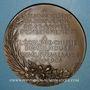 Monnaies Alsace. Mulhouse. Emilio Noelting, directeur le l'Ecole de Chimie de Mulhouse. 1905. Médaille bronze