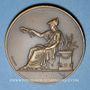 Monnaies Alsace. Mulhouse. Exposition apicole et horticole. 1911. Médaille bonze. 50,56 mm
