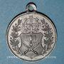 Monnaies Alsace. Mulhouse. Inauguration des nouveaux abattoirs. 1888. Médaille étain. 28,77 mm
