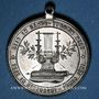 Monnaies Alsace. Pfastatt. Harmonie. 1900. Médaille étain nickelé. 31 mm
