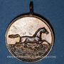 Monnaies Alsace. Riedisheim. Fête de la Musique. 1891. Médaille bronze. 26,06 mm