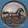 Monnaies Alsace. Riedisheim. Fête de la Musique. 1891. Médaille bronze. 28 mm