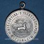 Monnaies Alsace. Riedisheim. Société de Chant Freundschaft. Bénédiction du drapeau. 1906. Médaille alu.