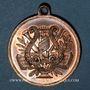 Monnaies Alsace. Saint-Louis. 1er concours de chant du Haut-Rhin. 1892. Médaille cuivre. 27,3 mm