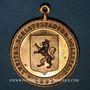Monnaies Alsace. Sélestat. 2e fête populaire. 1895. Médaille bronze doré, avec son œillet. 33,30 mm