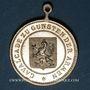 Monnaies Alsace. Sélestat. Cavalcade. 1891. Médaille bronze. 26 mm, avec son œillet