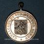 Monnaies Alsace. Sélestat. Cavalcade. 1891. Médaille bronze argenté. 26 mm, avec son œillet