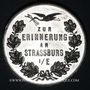 Monnaies Alsace. Souvenir de Strasbourg. Médaille étain. 36,1 mm. Gravée pazr Müller et Vogtenberger