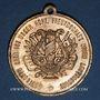 Monnaies Alsace. Strasbourg. 1ère fête des chanteurs d'Alsace-Lorraine. 1891. Médaille. Bronze doré. 33,33 m