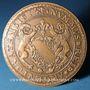Monnaies Alsace. Strasbourg. 23e congrès Eurofinas. 1983. Médaille bronze. 59,2 mm
