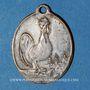 Monnaies Alsace. Strasbourg à la ville d'Armentières. 1919. Médaille ovale en laiton nickelé