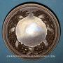Monnaies Alsace. Strasbourg. Cercle de jardinage d'Alsace. 1903. Médaille bronze. 50,64 mm