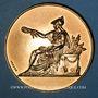 Monnaies Alsace. Strasbourg. Congrès National des Droguistes. 1949. Médaille bronze. 50,5 mm