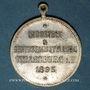 Monnaies Alsace. Strasbourg. Exposition Industrielle. 1895. Médaille laiton argenté. 28 mm. Avec son oeillet