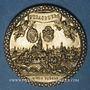 Monnaies Alsace. Strasbourg. Exposition philatélique Internationale. 1927. Médaille bronze. 35 mm