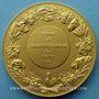 Monnaies Alsace. Strasbourg. Foire de Strasbourg-campagne. 1919. Médaille bronze doré. 50,4 mm
