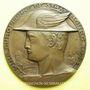 Monnaies Alsace. Strasbourg. Foire européenne. 1933. Médaille bronze. 50 mm. Gravée par Ch. Müller