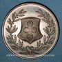 Monnaies Alsace. Strasbourg. Hospices civils. Médaille argent. 35,31 mm. Poinçon : corne d'abondance