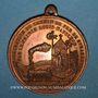 Monnaies Alsace. Strasbourg. Inauguration de la ligne de chemin de fer Paris-Strasbourg 1852. Médaille cuivre