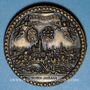 Monnaies Alsace. Strasbourg. La ville au 17e siècle. Médaille bronze. 35 mm