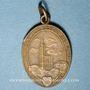 Monnaies Alsace. Strasbourg. Libération de Strasbourg. 1918. Médaille. Bronze, ovale, avec anneau