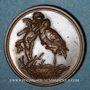 Monnaies Alsace. Strasbourg. Naissance de Louis Maurice François Himly. 1894. Médaille bronze. 22 mm
