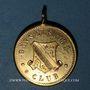Monnaies Alsace. Strasbourg. Société nautique Gänselspiel Club. 15-8-1886. Médaille laiton. 25 mm