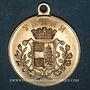 Monnaies Alsace. Thann. Cavalcade. 1892. Médaille bronze, avec œillet. 29,86 mm