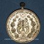 Monnaies Neuf-Brisach. Bénédiction du drapeau du cercle masculin des chanteurs «Frohsinn». 1894. Médaille