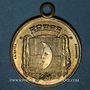 Monnaies Saint-Amarin. Cavalcade de bienfaisance. 1884. Médaille laiton. 28,3 mm, avec anneau