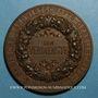 Monnaies Strasbourg. Exposition agricole. 1890.  Bronze. 65 mm.
