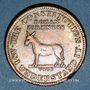 Monnaies Etats Unis. Hard Times token. Jeton satirique. I take the responsability (1833). Cuivre. 28,6 mm