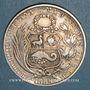Monnaies Pérou. République. 1 sol 1880 Y.J.