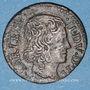 Monnaies Ardennes. Principauté Arches & Charleville. Charles I de Gonzague (1601-37). Denier tournois 16(3)3