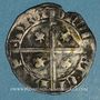 Monnaies Principauté d'Orange. Raymond V (1340-1393). Demi-carlin