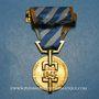 Monnaies Médaille de la Déportation et de l'Internement (1939-1945). Modèle pour les politiques avec barrette