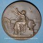 Monnaies Guerre de 1870-1871. Emploi des pigeons. Médaille bronze. 63 mm. Gravée par Degeorge