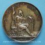 Monnaies Révolution de 1848. Commémoration des journées de février. Médaille cuivre blanchi. 51,5 mm