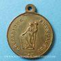 Monnaies Révolution de 1848. Promulgation de la Constitution. Médaille cuivre jaune. 24 mm