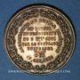 Monnaies Révolution de 1848. Vote du Plébiscite 1851. Médaille cuivre jaune. 35 mm