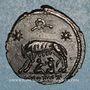 Monnaies Monnayage pour Rome. Centenionalis. Arles, officine incertaine.  332-333. R/: la Louve
