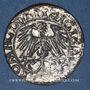 Monnaies Lituanie. Grand Duché. Sigismond III Auguste (1544-1572). 1/2 gros 1550. Cuivre arg. Faux d'époque !