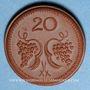 Monnaies Pologne. Ziebice. Münsterberg Schles. 20 pfennig. Porcelaine