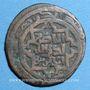 Monnaies Afghanistan. Mongols(?). Epoque Chingiz Khan (603-624H). Dirham bronze, Shafurqan