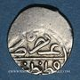Monnaies Anatolie. Ottomans. Bayazid II (886-918H). Akce (886)H, Qustantiniya
