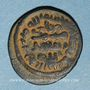 Monnaies Palestine. Umayyades. Anonyme (78-120H). Fals,  le champ du revers orné d'un oiseau, Tabariya