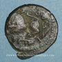 Monnaies Palestine. Umayyades, vers 115-125H. Fals anonyme au lion
