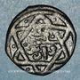 Monnaies Syrie. Mamlouks bahrites. Abu-Bakr (741-742H).  Fals (7)41H, Damas