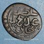 Monnaies Tunisie. Ottomans. Abdoul Hamid (1187-1203H).  Burbe 1196H. Tunis